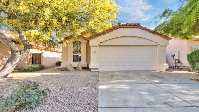 12525 W Windsor Avenue, Avondale, AZ 85392 (MLS #5914482) :: Yost Realty Group at RE/MAX Casa Grande