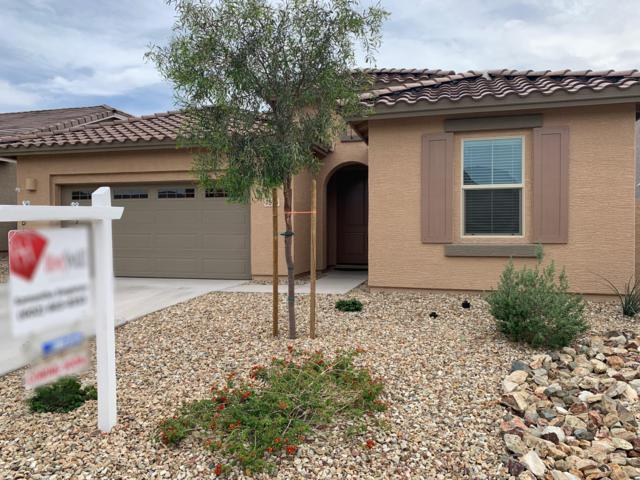 7575 W Fetlock Trail, Peoria, AZ 85383 (MLS #5914484) :: Riddle Realty