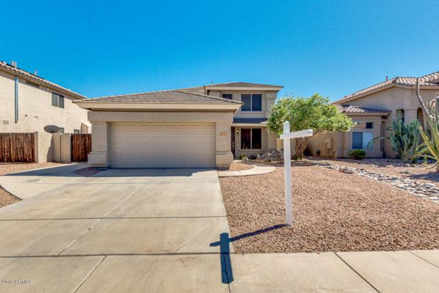 493 W Myrtle Drive, Chandler, AZ 85248 (MLS #5914489) :: CANAM Realty Group