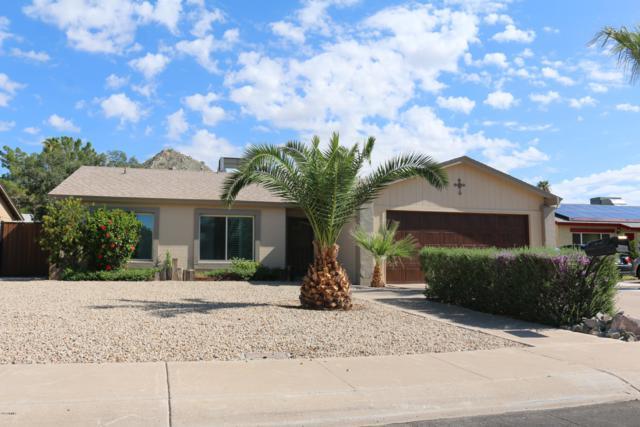 2424 E Aster Drive, Phoenix, AZ 85032 (MLS #5914497) :: The W Group
