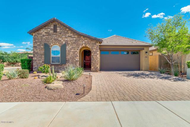 9763 W Los Gatos Drive, Peoria, AZ 85383 (MLS #5914509) :: CANAM Realty Group