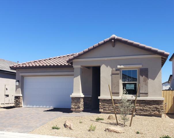 6634 E Villa Rita Drive, Phoenix, AZ 85054 (MLS #5914513) :: CANAM Realty Group