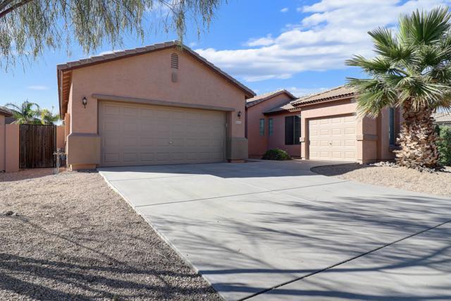 3605 W Buckhorn Trail, Phoenix, AZ 85083 (MLS #5914521) :: CANAM Realty Group