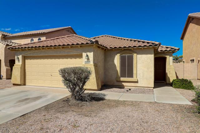 43810 W Elizabeth Avenue, Maricopa, AZ 85138 (MLS #5914525) :: Yost Realty Group at RE/MAX Casa Grande