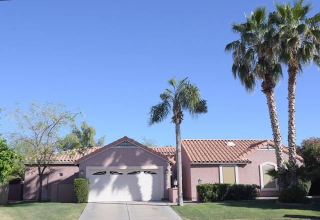5608 E Le Marche Avenue, Scottsdale, AZ 85254 (MLS #5914527) :: CANAM Realty Group