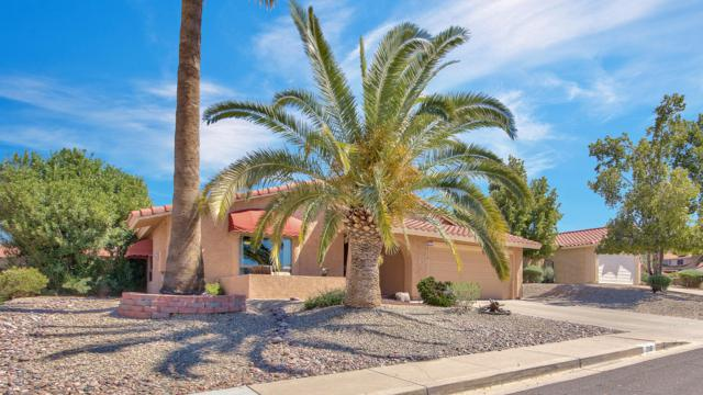 2118 E Redfield Road, Phoenix, AZ 85022 (MLS #5914529) :: CANAM Realty Group