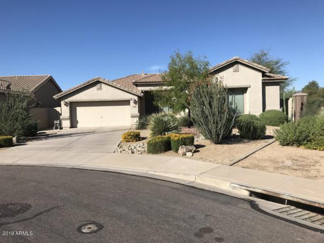 2734 S Seton Avenue, Gilbert, AZ 85295 (MLS #5914531) :: CANAM Realty Group