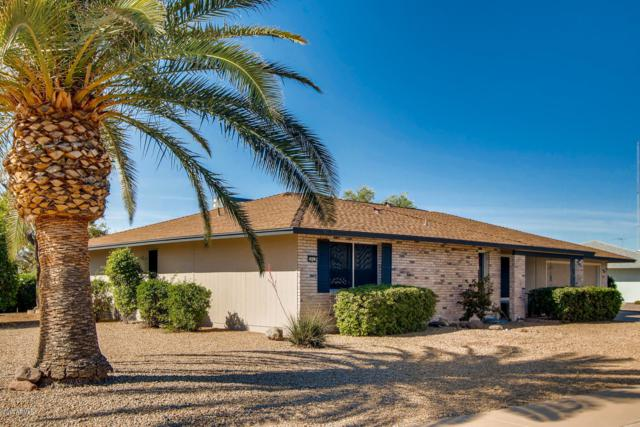 9803 W Terrace Lane, Sun City, AZ 85373 (MLS #5914532) :: CANAM Realty Group