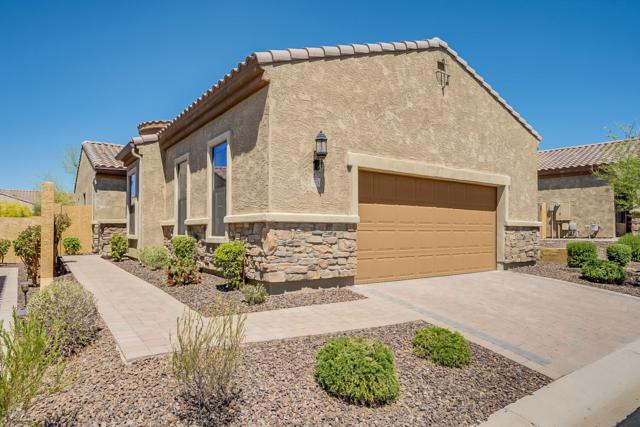 1818 N Trowbridge, Mesa, AZ 85207 (MLS #5914533) :: CANAM Realty Group