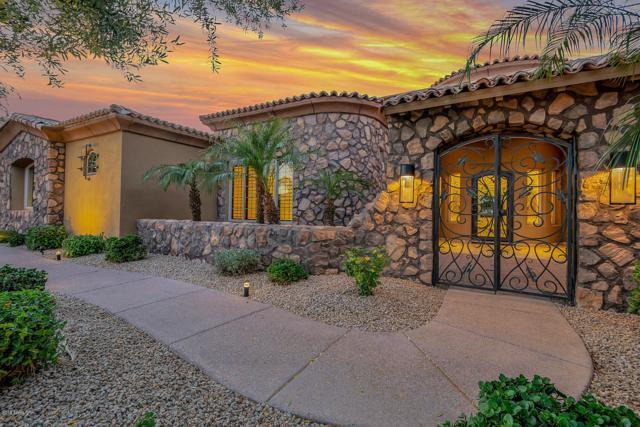 2798 E Locust Drive, Chandler, AZ 85286 (MLS #5914537) :: The Bill and Cindy Flowers Team