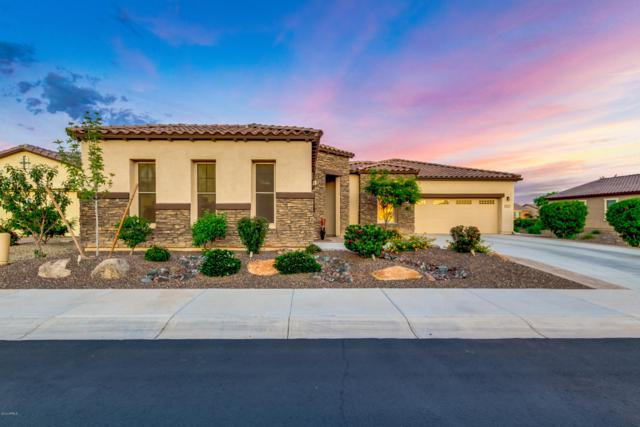 16617 S 178TH Drive, Goodyear, AZ 85338 (MLS #5914553) :: Kortright Group - West USA Realty