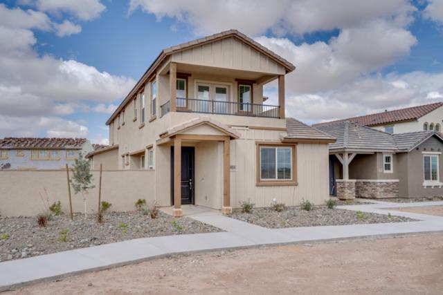 4921 S Turbine, Mesa, AZ 85212 (MLS #5914607) :: Lucido Agency