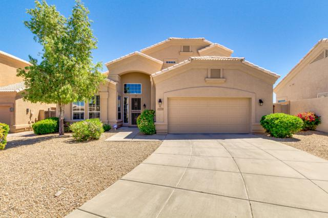 16159 E Glenview Drive, Fountain Hills, AZ 85268 (MLS #5914611) :: Devor Real Estate Associates