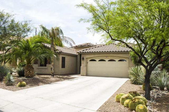 3882 S Eucalyptus Place, Chandler, AZ 85286 (MLS #5914634) :: CC & Co. Real Estate Team