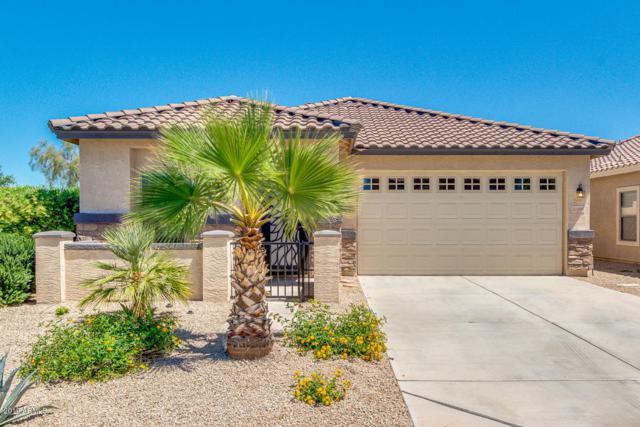 21806 E Gold Canyon Drive, Queen Creek, AZ 85142 (MLS #5914642) :: The Kenny Klaus Team