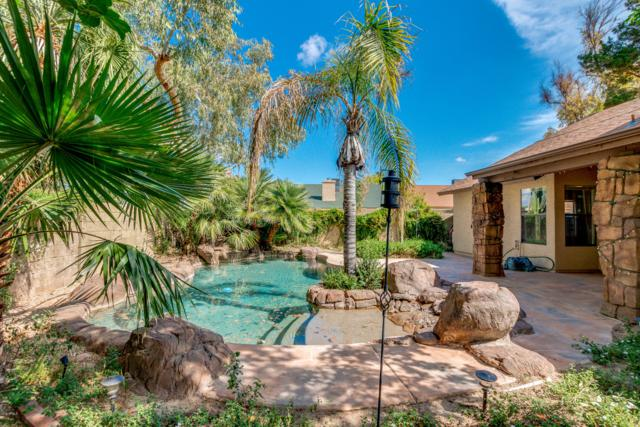 15812 N 39TH Street, Phoenix, AZ 85032 (MLS #5914650) :: The Everest Team at My Home Group