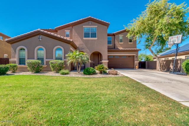 3103 E Fandango Drive, Gilbert, AZ 85298 (MLS #5914655) :: Keller Williams Realty Phoenix
