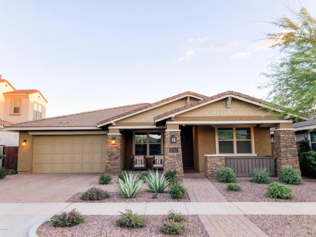 10507 E Pivitol Avenue, Mesa, AZ 85212 (MLS #5914664) :: Lucido Agency