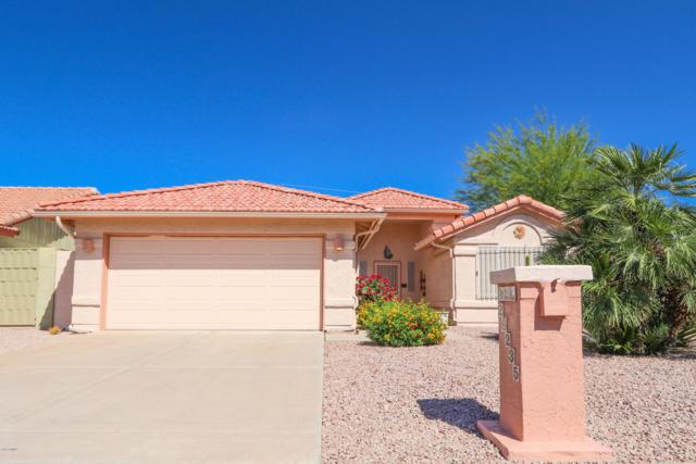 26235 S Saddletree Drive, Sun Lakes, AZ 85248 (MLS #5914673) :: Keller Williams Realty Phoenix