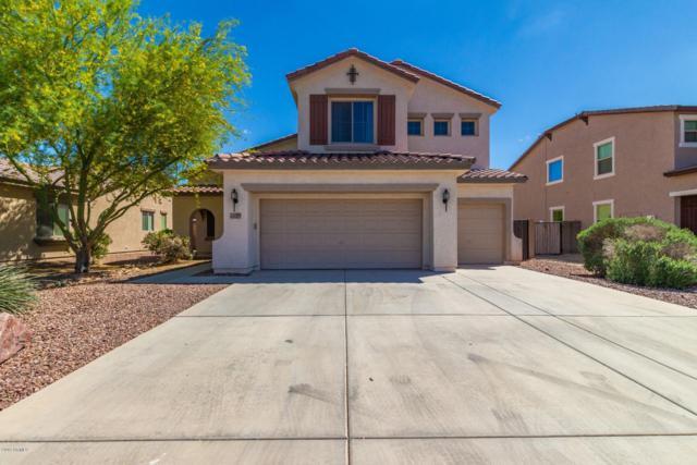 12175 W Chase Lane, Avondale, AZ 85323 (MLS #5914681) :: Devor Real Estate Associates