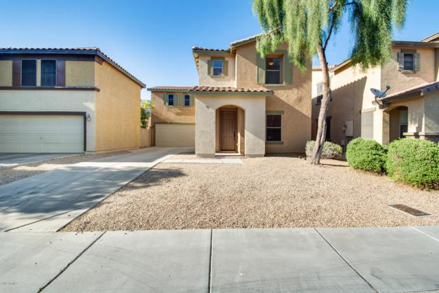 6460 W Orchid Lane, Glendale, AZ 85302 (MLS #5914684) :: Keller Williams Realty Phoenix