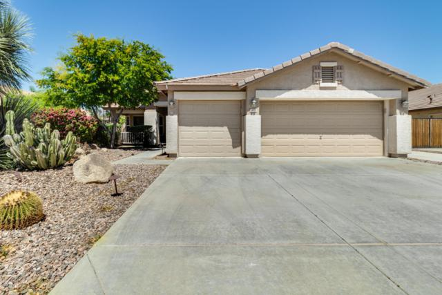 7670 W Robin Lane, Peoria, AZ 85383 (MLS #5914688) :: Yost Realty Group at RE/MAX Casa Grande