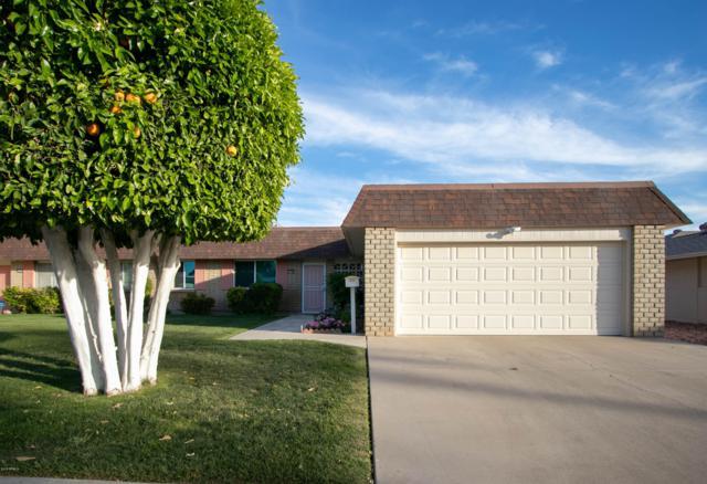 10406 W Tropicana Circle, Sun City, AZ 85351 (MLS #5914689) :: Yost Realty Group at RE/MAX Casa Grande