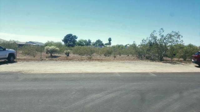 1446 N 72nd Street, Mesa, AZ 85212 (MLS #5914709) :: Lucido Agency