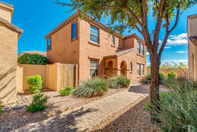 2777 E Bart Street, Gilbert, AZ 85295 (MLS #5914710) :: Occasio Realty