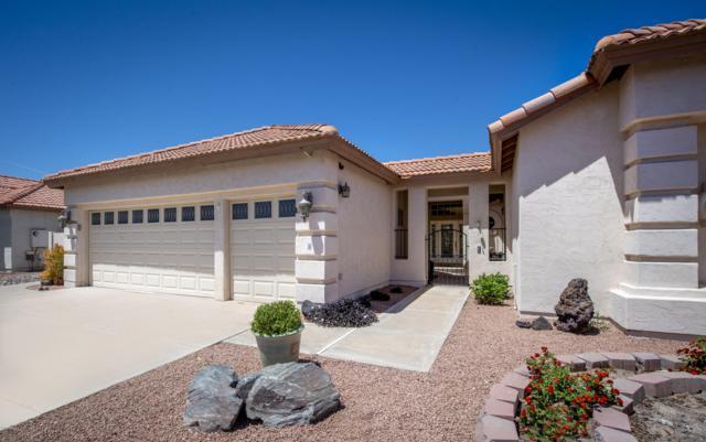 25418 S Spring Creek Road, Sun Lakes, AZ 85248 (MLS #5914716) :: Lucido Agency