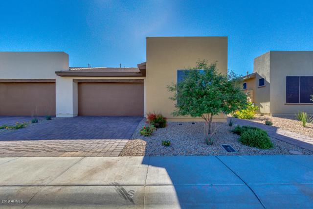35990 N Zinnis Trail, San Tan Valley, AZ 85140 (MLS #5914730) :: The AZ Performance Realty Team