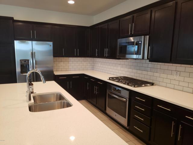 3679 E Stiles Lane, Gilbert, AZ 85295 (MLS #5914743) :: Revelation Real Estate