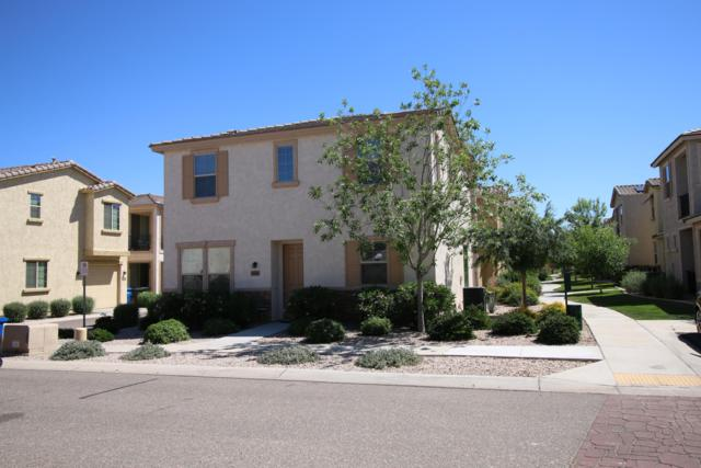 17741 W Woodrow Lane, Surprise, AZ 85388 (MLS #5914760) :: Lifestyle Partners Team