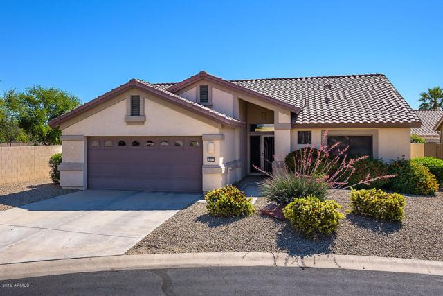 4079 N 162ND Drive, Goodyear, AZ 85395 (MLS #5914778) :: Occasio Realty