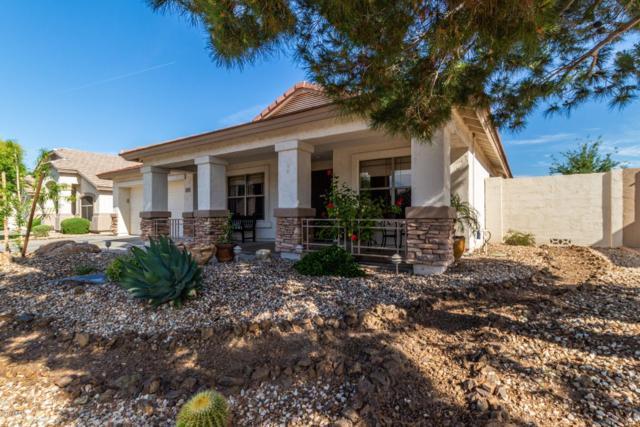 6392 W Behrend Drive, Glendale, AZ 85308 (MLS #5914788) :: The Ford Team