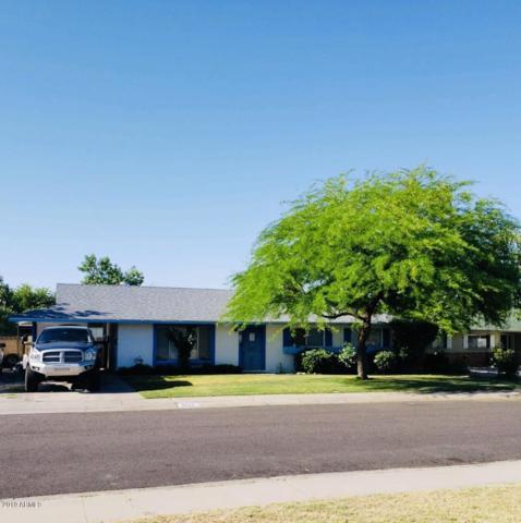 3115 W Gelding Drive, Phoenix, AZ 85053 (MLS #5914831) :: CC & Co. Real Estate Team