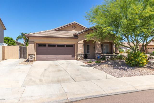 7656 W Via Del Sol, Peoria, AZ 85383 (MLS #5914835) :: Yost Realty Group at RE/MAX Casa Grande