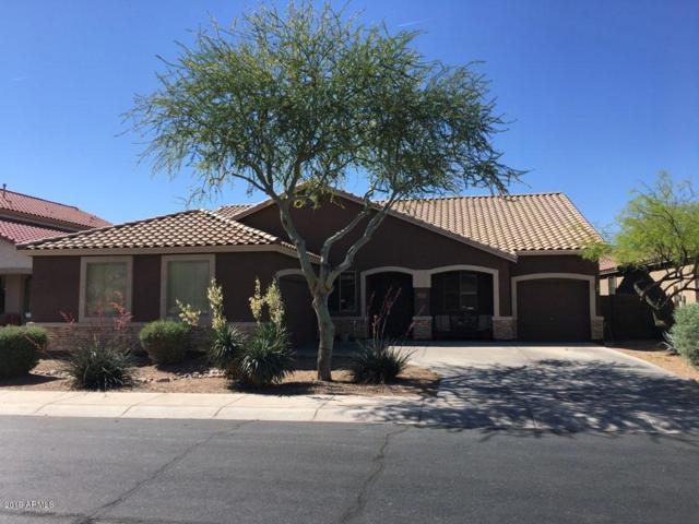 46029 W Meadows Lane, Maricopa, AZ 85139 (MLS #5914902) :: Yost Realty Group at RE/MAX Casa Grande