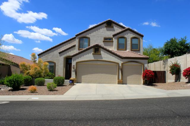 18720 N 21 Street, Phoenix, AZ 85024 (MLS #5914910) :: The Luna Team