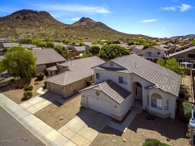 6429 W Briles Road, Phoenix, AZ 85083 (MLS #5914990) :: Team Wilson Real Estate
