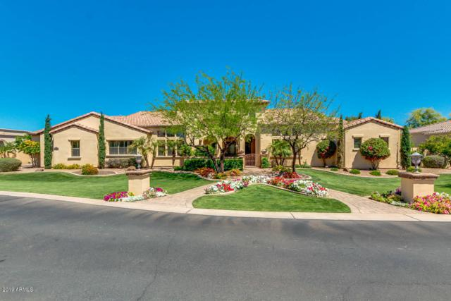 2716 E Carob Drive, Chandler, AZ 85286 (#5914999) :: Gateway Partners | Realty Executives Tucson Elite