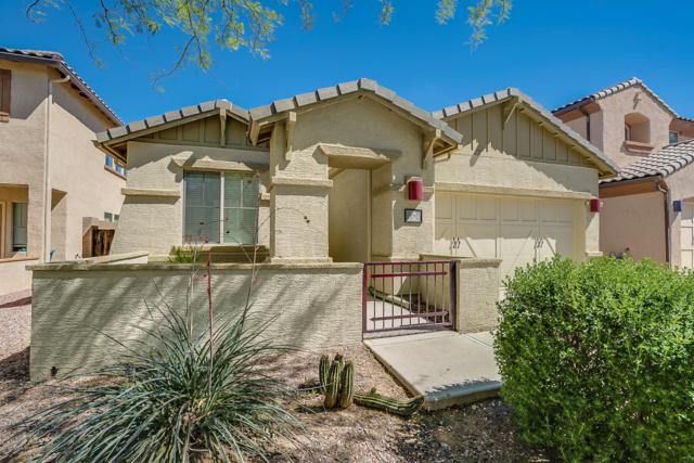 1262 W Varese Way, Tucson, AZ 85755 (MLS #5915006) :: My Home Group