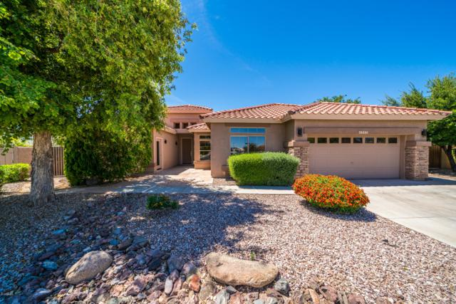 4980 S Peachwood Drive, Gilbert, AZ 85298 (#5915012) :: Gateway Partners | Realty Executives Tucson Elite