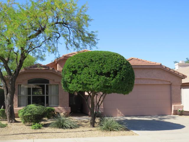 4321 E Abraham Lane, Phoenix, AZ 85050 (MLS #5915018) :: Lux Home Group at  Keller Williams Realty Phoenix