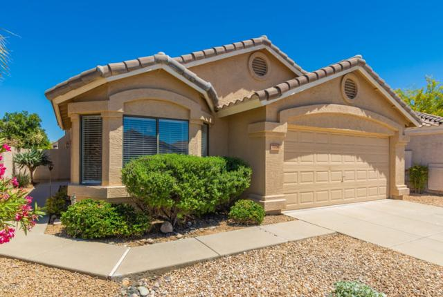 3708 W Runion Drive, Glendale, AZ 85308 (MLS #5915034) :: The Ford Team