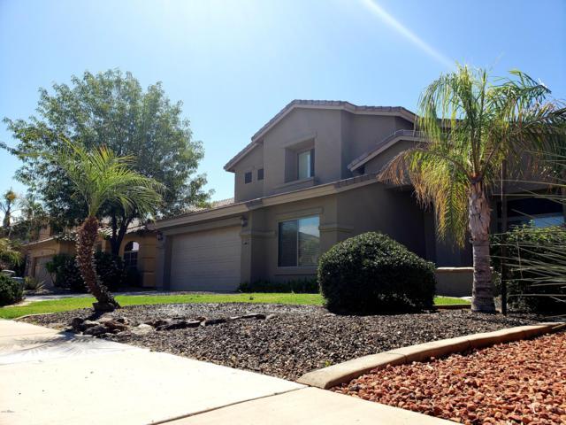 11327 E Shepperd Avenue, Mesa, AZ 85212 (MLS #5915043) :: Realty Executives