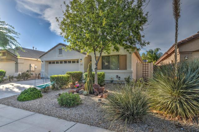 26 W Grey Stone Street, San Tan Valley, AZ 85143 (MLS #5915045) :: Realty Executives