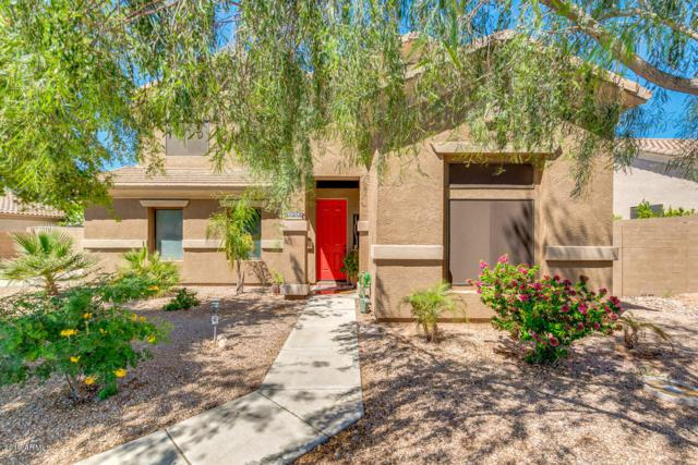11310 E Ellis Street, Mesa, AZ 85207 (MLS #5915058) :: Riddle Realty