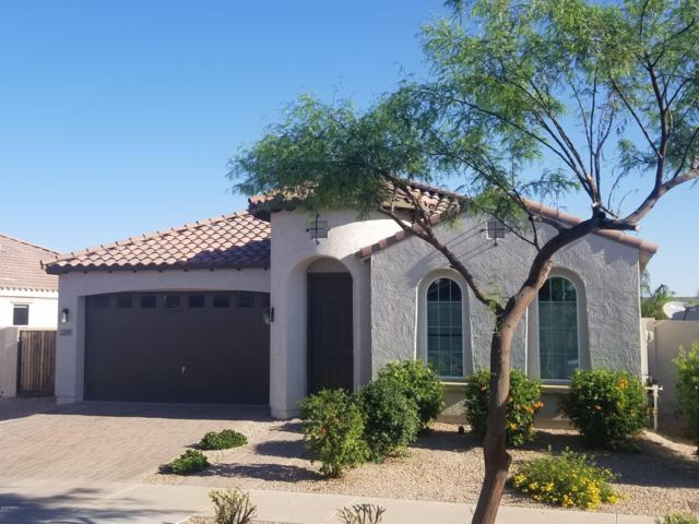 22256 E Via De Olivos Court, Queen Creek, AZ 85142 (MLS #5915117) :: Relevate | Phoenix