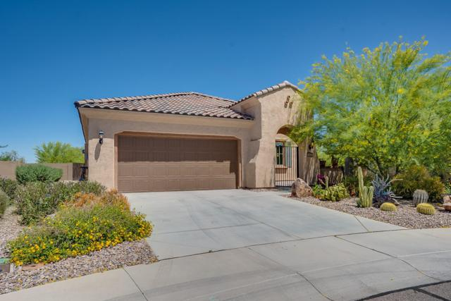 4408 N Julieanne Court, Florence, AZ 85132 (MLS #5915127) :: Yost Realty Group at RE/MAX Casa Grande